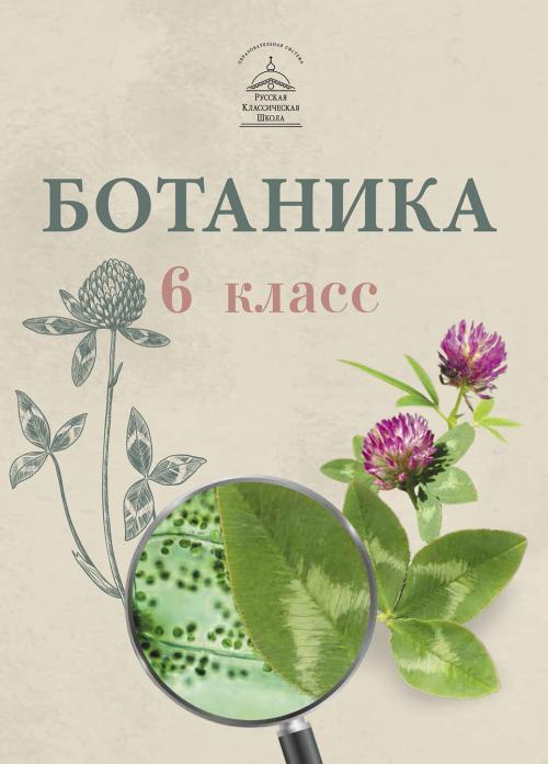 Ботаника для 6 класса