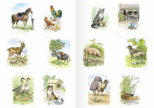 Альбом для раскрашивания. |Часть 9. Домашние животные