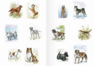 Альбом для раскрашивания. |Часть 10. Собаки