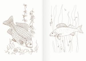 Альбом для раскрашивания. |Часть 14. Рыбы